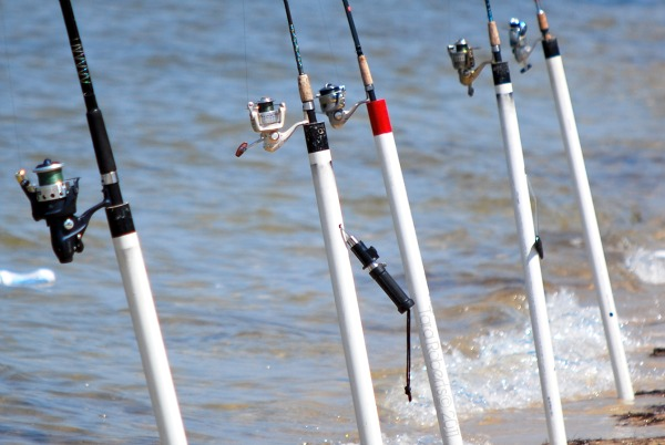 fishing poles at the beach