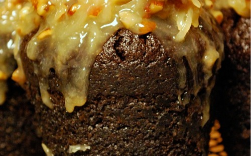 german chocolate muffin