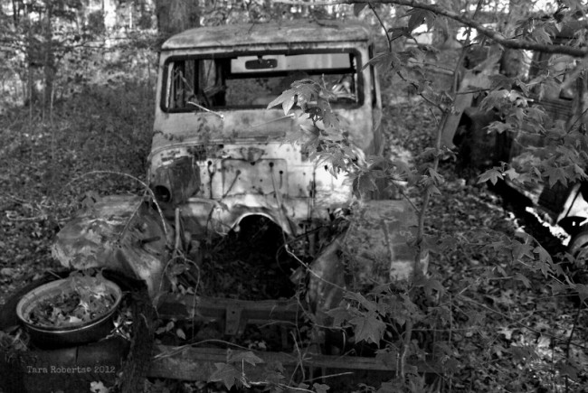 junked willys jeep