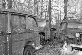Willys graveyard