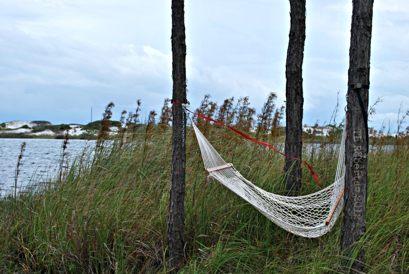 hammock by the water