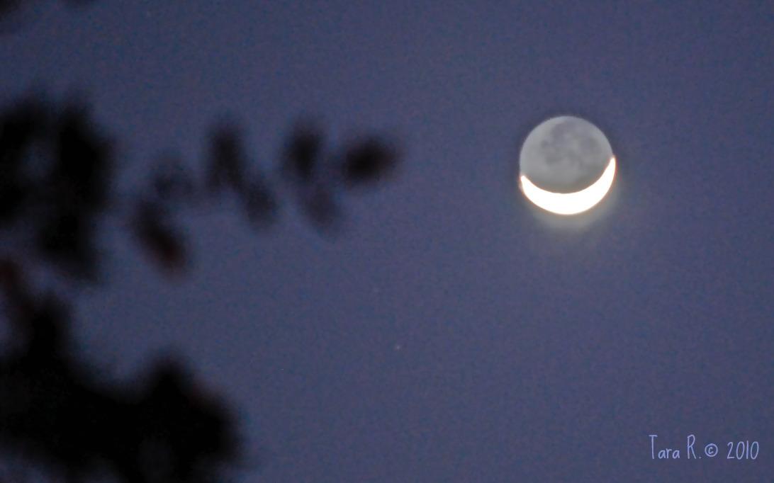 Cheshire crescent moon