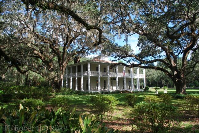 Wesley Houses Eden Gardens