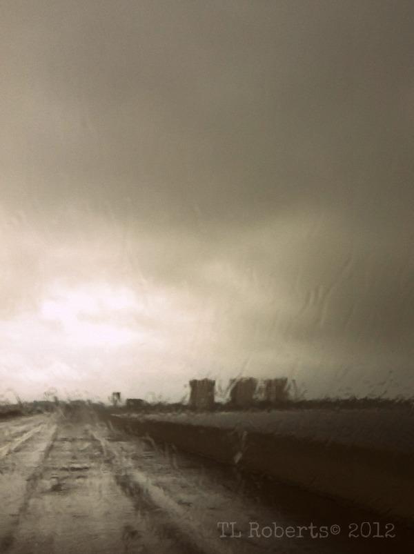 rainbridgeSW