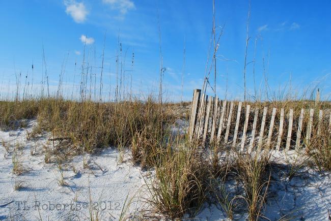dune break