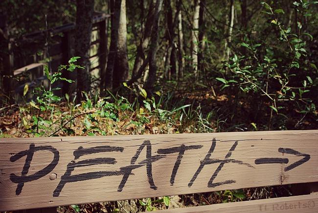 Death fence