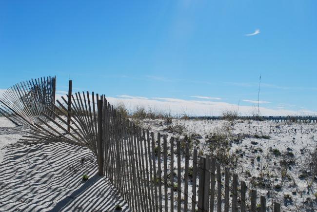 dune fence pier