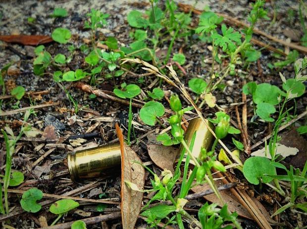 9mm ammo casings