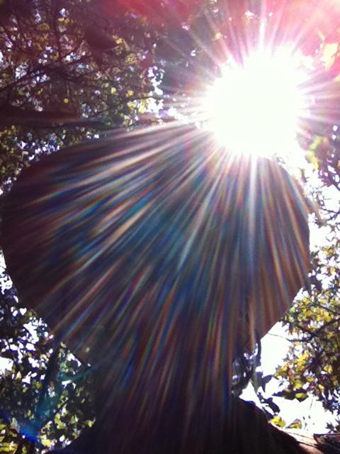 sunflare self portrait