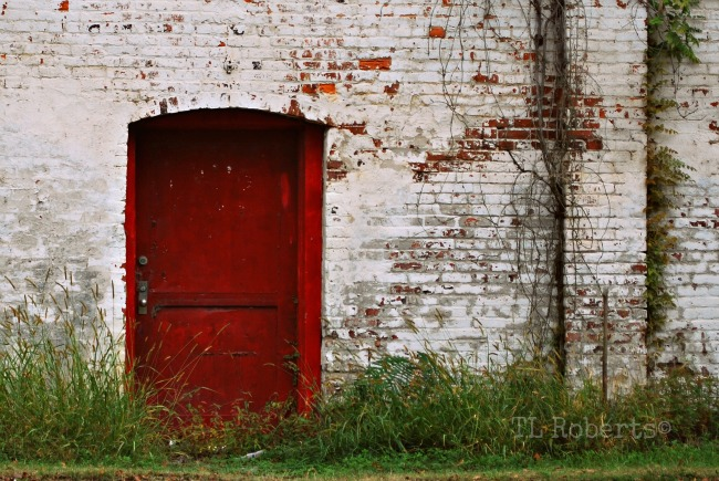 Red door in white wall