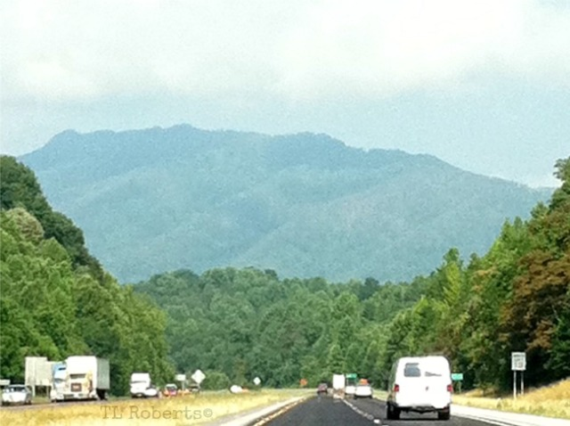 foothills of Chattanooga TN