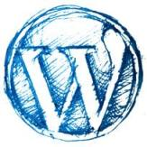 wordpress button grunge