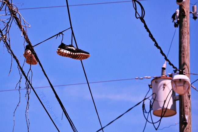 sneakers on a high wire
