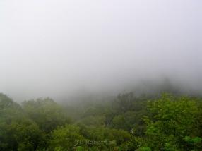 Georgia mountains