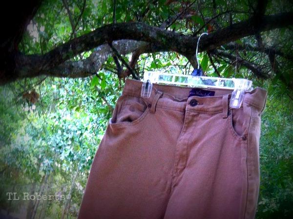 pants on a hanger
