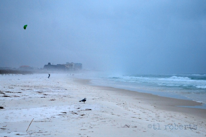 sea spray and fog