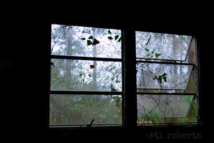 crank window