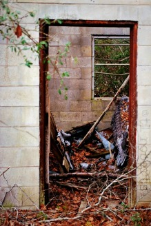 doorway to abandoned home