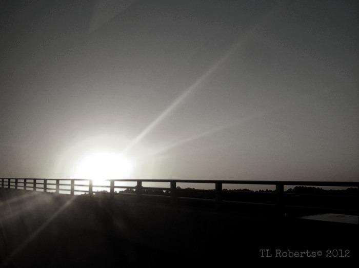 black and white, bridge and rising moon