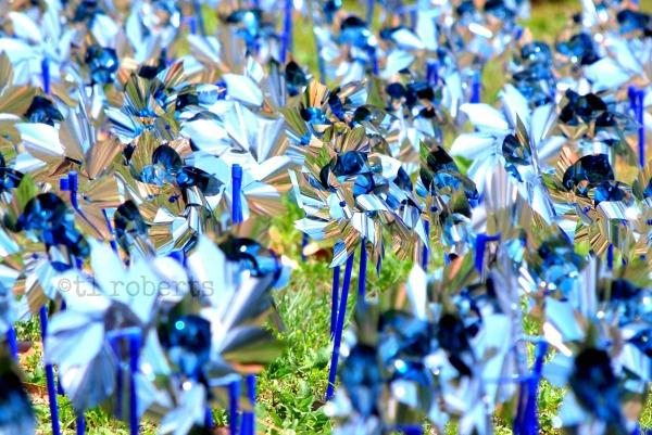 field of blue pinwheels