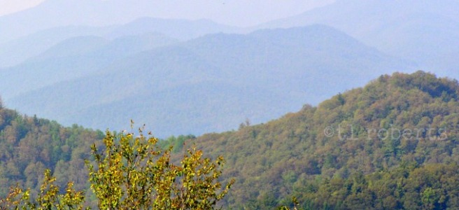 Smoky Mountain foothills