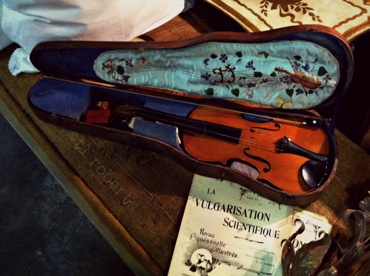 violin and casse