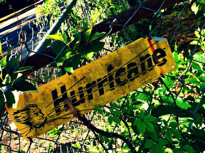 hurricane fence sign