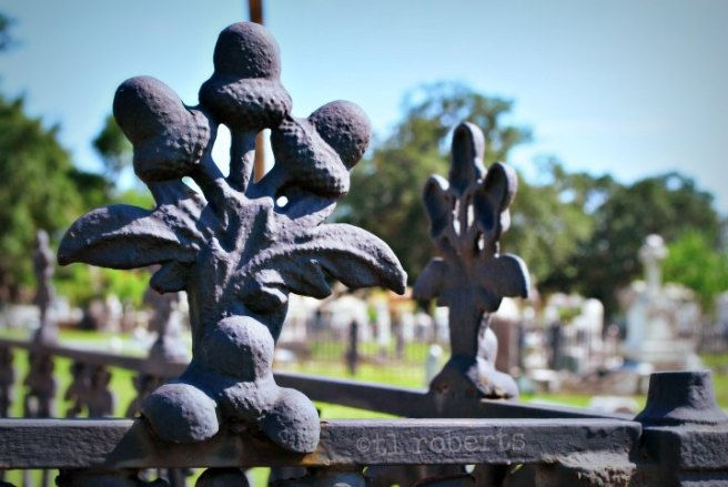 acorn finials on cemetery fence
