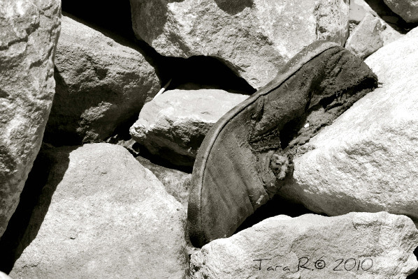 discarded shoe