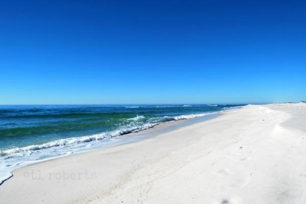 Gulf Coast beach