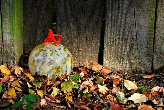 glass pumpkin in dry leaves
