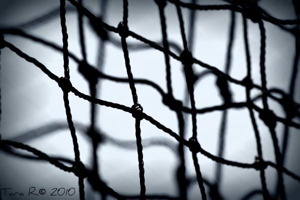 black nets