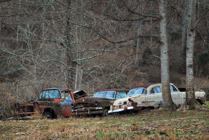 abandoned old cars