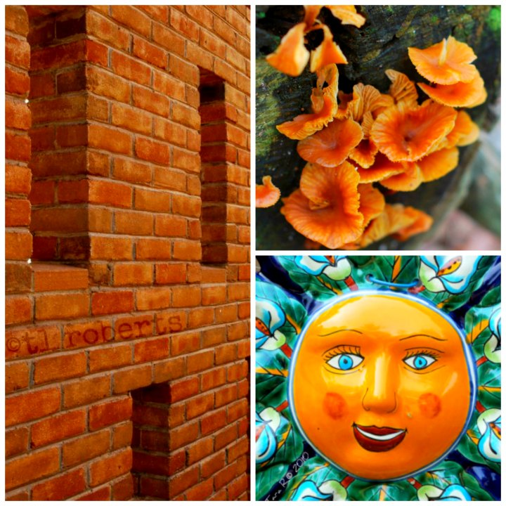 Color orange collage