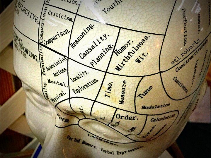 Mind map ceramic head