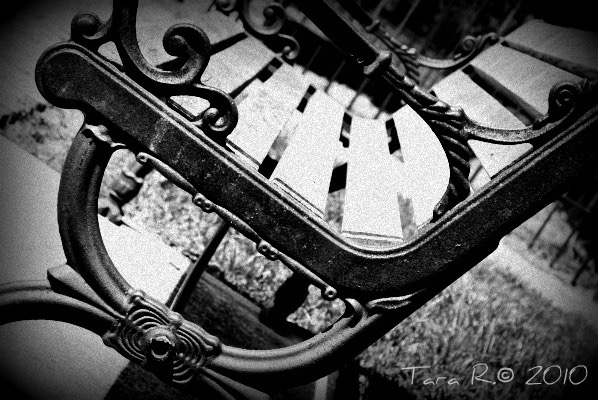 park bench black and white