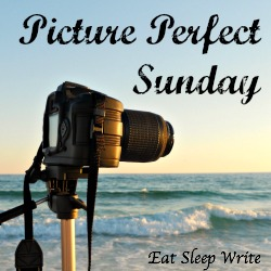 Picture Perfect Sunday badge2