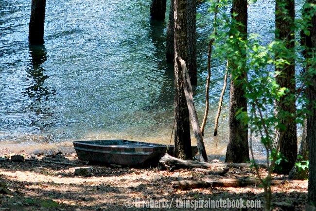 johnboat on lake shore