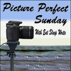 Picture Perfect Sunday badge