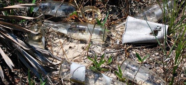 glass bottle litter