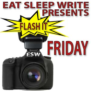 Flash Friday badge