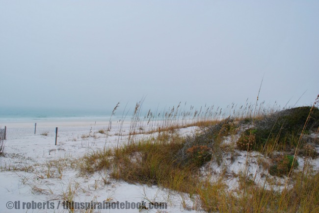 hazy beach