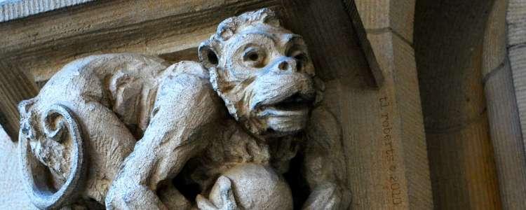masonry monkey