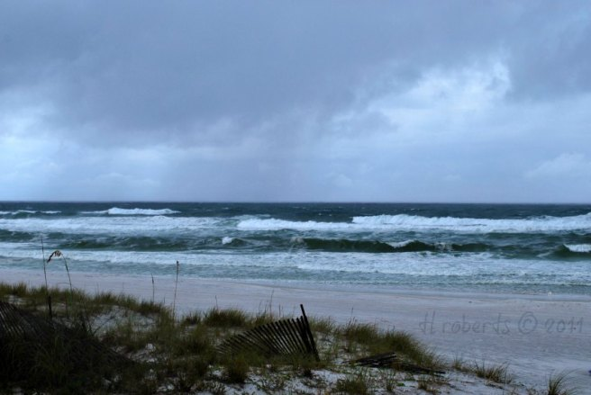 tropical storm waves