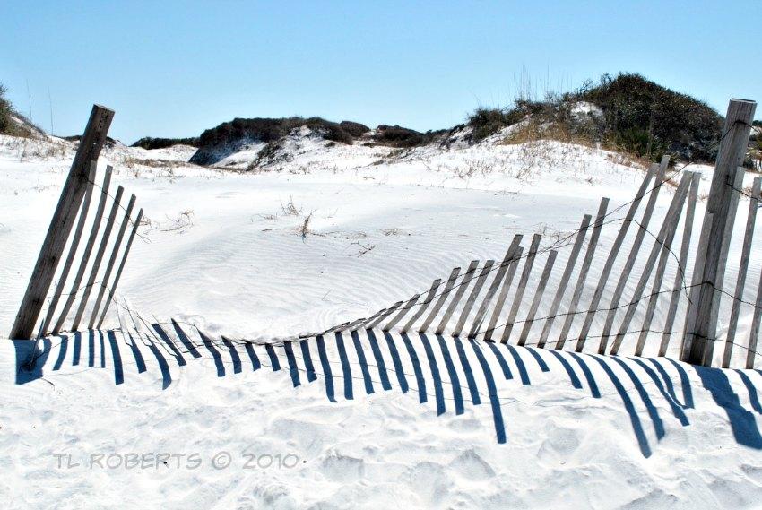 white sand, fence row