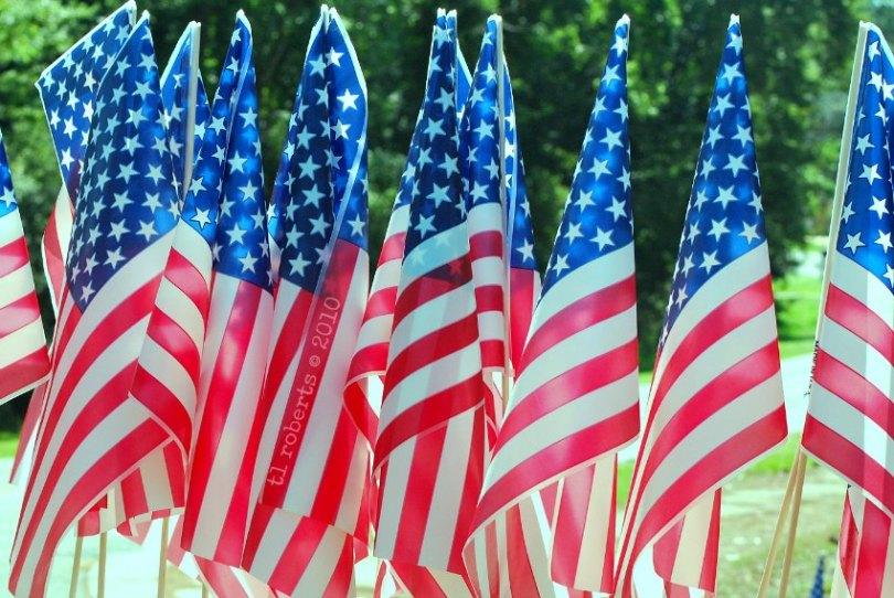little plastic American flags