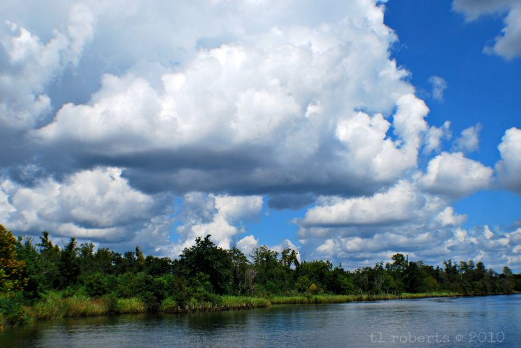 blue sky and white cumulus clouds