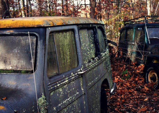 rusted Willys jeeps