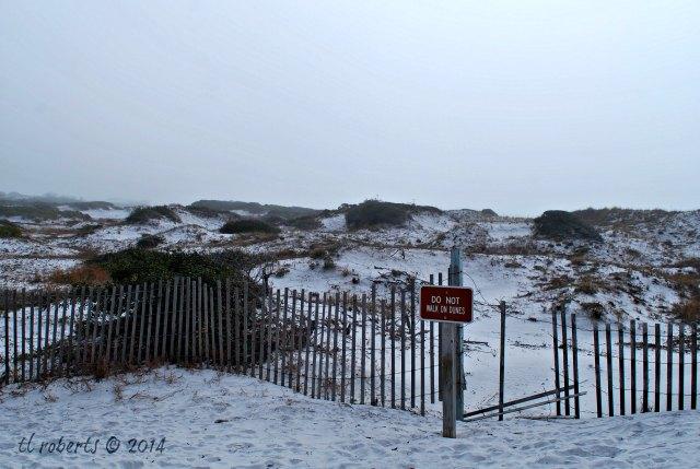do not walk on dune sign on beach