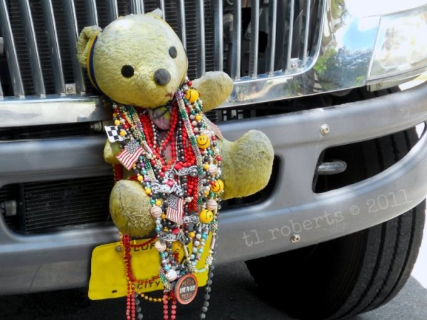 teddy bear draped in Mardi Gras beads